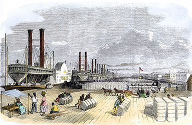 African American slaves loading cotton on the levee at New Orleans, 1850s